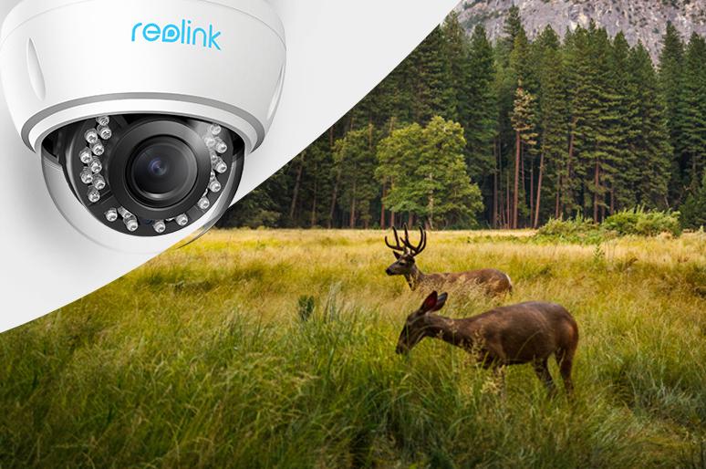 Security Camera in Canada