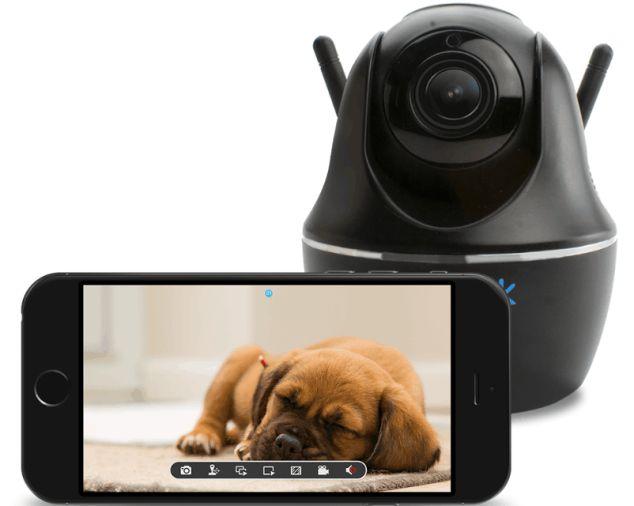 die 9 besten tipps eine g nstige haustier kamera zu finden. Black Bedroom Furniture Sets. Home Design Ideas