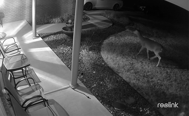 Infrared Security Camera Clear Images