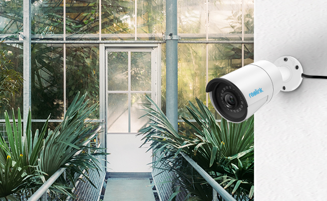 Security camera infrared light wont harm plants and here are the tips to reduce effects of excessive security camera infrared light to plant growth aloadofball Images
