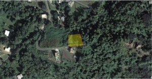 LOT 6 (4), PR-31 INTERIOR, CEIBA NORTE WARD