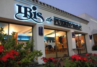 IBIS de Puerto Varas Borde Río