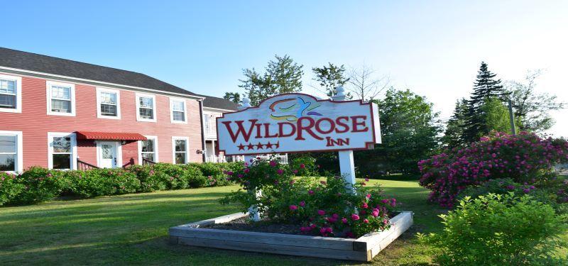 Wild_rose_sign