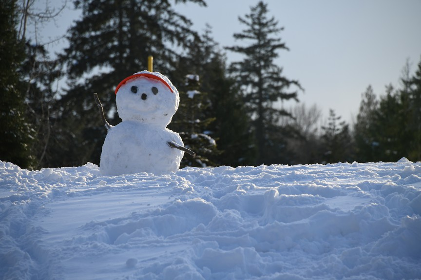 The Multicultural Association of Sussex has moved its snowman building event scheduled for Jan. 16 online in light of the province's move to the orange phase of the pandemic recovery plan.
