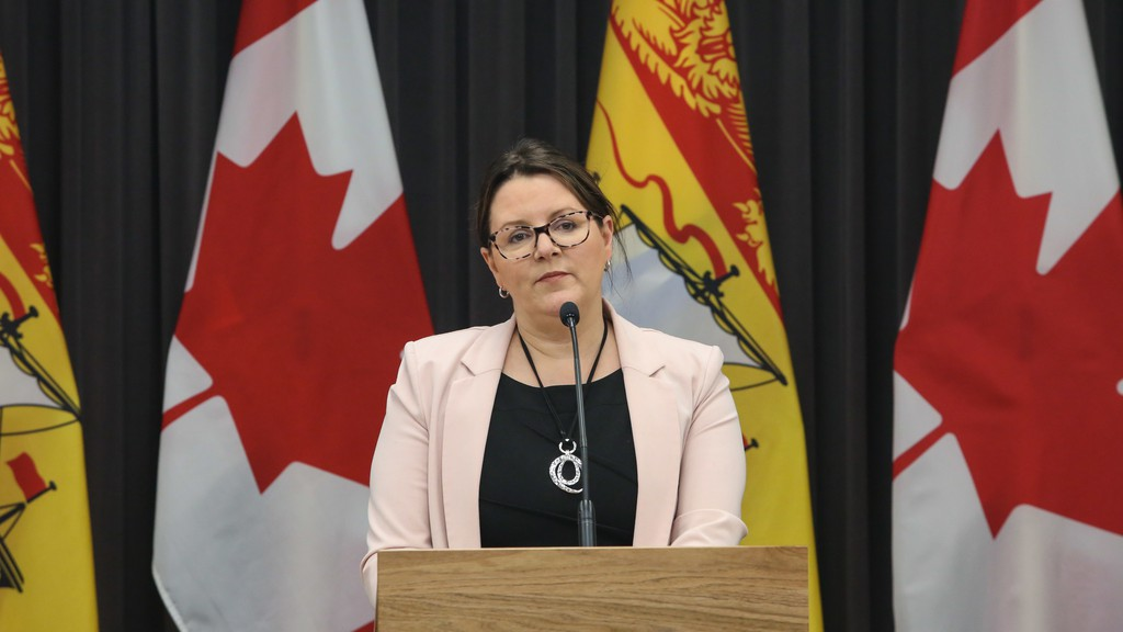 Dr. Jennifer Russell, chief medical officer of health, reported one new confirmed case of COVID-19 in the Bathurst area health zone Sunday. Dr. Russell is shown at a past COVID-19 briefing.