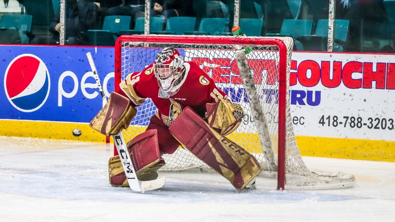 Christian Sbaraglia, shown tending goal for the Acadie-Bathurst Titan, has been acquired by the Fredericton Red Wings.