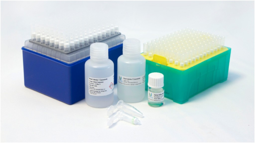 LuminUltra, a Fredericton-based company, has developed qPCR (quantitatitve polymerase chain reaction) test kits, which can accurately determine whether or not a person has COVID-19 and its variants within two hours. While other provinces are currently using these tests, New Brunswick is not, the company says.