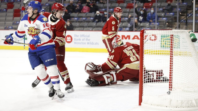 The Acadie-Bathurst Titan have announced a new program that will see a tree planted in the community for every goal scored this season.Pictured is Jan Bednar in a matchup against the Moncton Wildcats during previous league action.