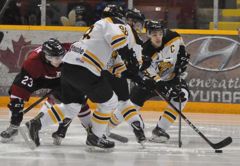 Campbellton Junior A Tigers captain Coleton Perry and his mates will continue their playoffs this weekend but will not be contesting the Maritime Hockey League's Canadian Tire Cup after all eight teams in the EastLink South Division cancelled their seasons on Tuesday.
