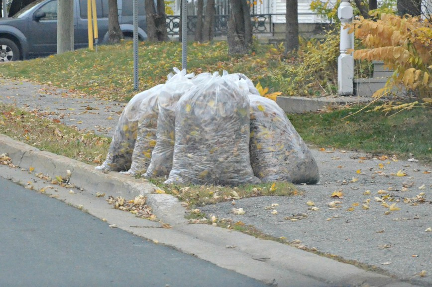 The City of Miramichi's 2021 spring leaf pickup will wrap up Saturday.