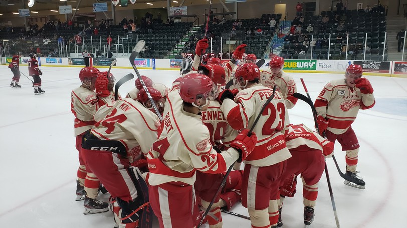 The Fredericton Red Wings are back in action at the Grant-Harvey Centre this weekend with  a pair of Maritime Hockey League exhibition games.
