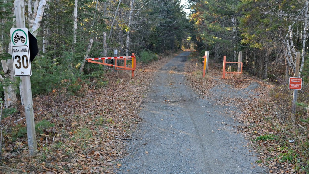 Police are investigating after a report by a woman she was assaulted on June 1 while walking the NB Trail in Taintville. Police believe it is an isolated incident despite a post spreading online advising people to avoid walking the trail alone.