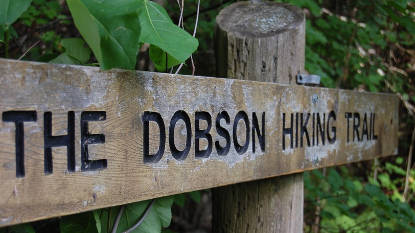 A string of rescues on the Dobson Trail and the Fundy Footpath have prompted calls for hikers to better prepare for challenging wilderness treks. The Dobson trailhead in Riverview is shown Wednesday.