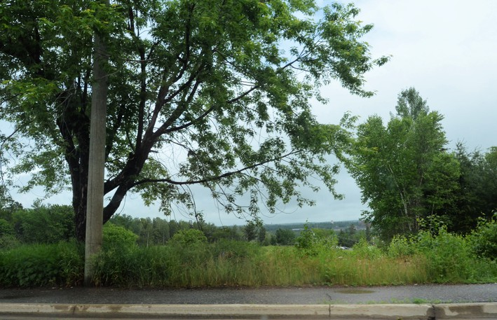 Miramichi city council has approved a rezoning of the vacant lots at 600 and 624 Old King George Hwy., with conditions, to accommodate a proposed 118-unit apartment complex.