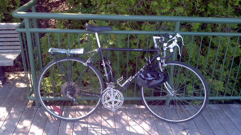 Columnist Martin Wightman's bicycle is shown in Rockwood Park in Saint John – a locale he stopped cycling to after several near-misses on busy bridges with inadequate biking infrastructure. He argues preventive medicine, physical activity and screen-time reductions are not given a prominent place in federal health-spending promises and infrastructure funding plans, costing lives and dollars.