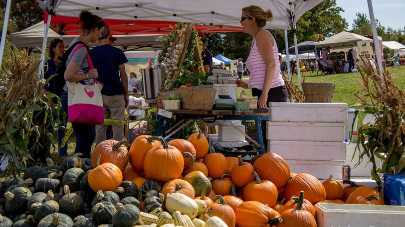 """Charlotte County's """"traditional fall fair""""will celebrate rural living, according to chair Todd Ross, with tractor parades on both mornings and showcases for animals, farm equipment, gardening and crops."""