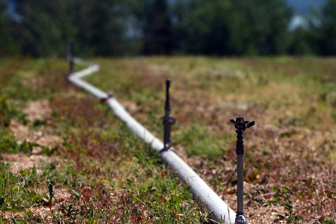 An irrigation system in a harvested strawberry field on Christian Michaud's Bouctouche area field is seen in a file photo. Dry weather has been plaguing farmers in northern New Brunswick this summer.