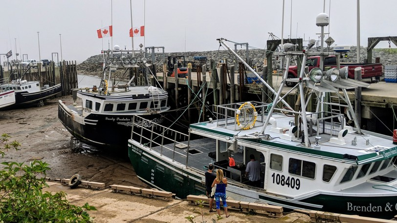 Fishing boats in Alma are seen at low tide in this file photo. The Village of Alma is in a water emergency Friday morning, calling in trucks and telling residents to conserve water.