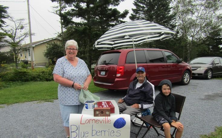 Neighbourhood customer Pat Palmer picks up blueberries from Donnie Adams and his grandson Allister Adams.