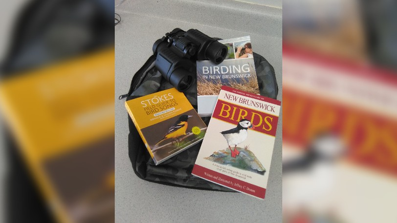 The Sussex Regional Library has four new kits available for free with a library card to help people get outside, like a birdwatching kit, pictured here.