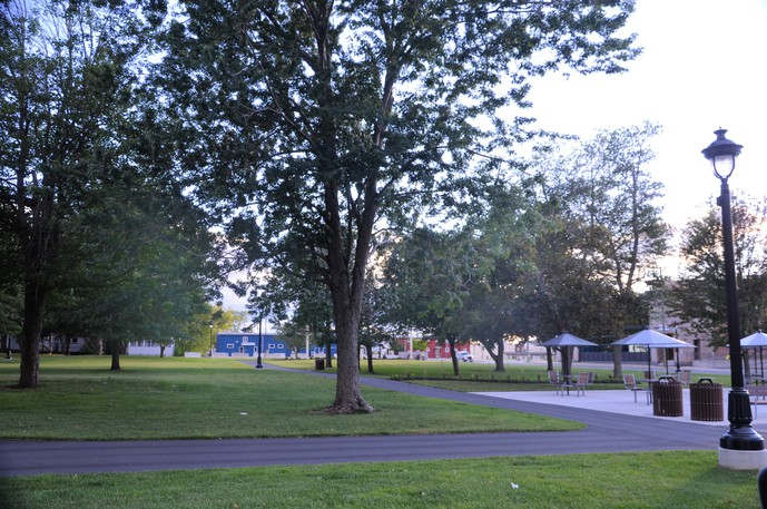 Planting trees similar to the ones that shade the new Elm Park patio in Miramichi is among several measures that can help fight climate change, columnist Steve Heckbert writes.