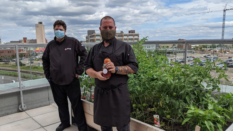 Avenir Centre Director of Food and Beverages Chris McEachern, left and Executive Chef Trevor Rowe stand in front of their crop of tomatoes on the arena's rooftop patio. The tomatoes, vegetables and herbs from the garden will be used in dishes at the concession stands this fall.