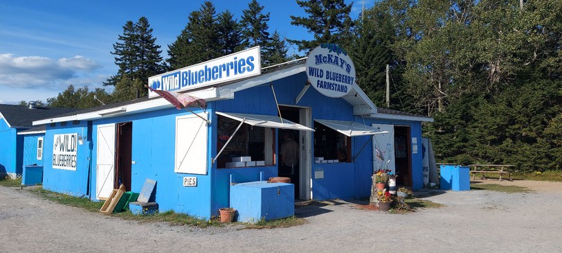 McKay's Wild Blueberry Farmstand is believed to be the last location where Musquash man Paul Doughty was confirmed to be seen before his disappearance. RCMP said Wednesday Doughty's vehicle has been recovered on trail in Pennfield.