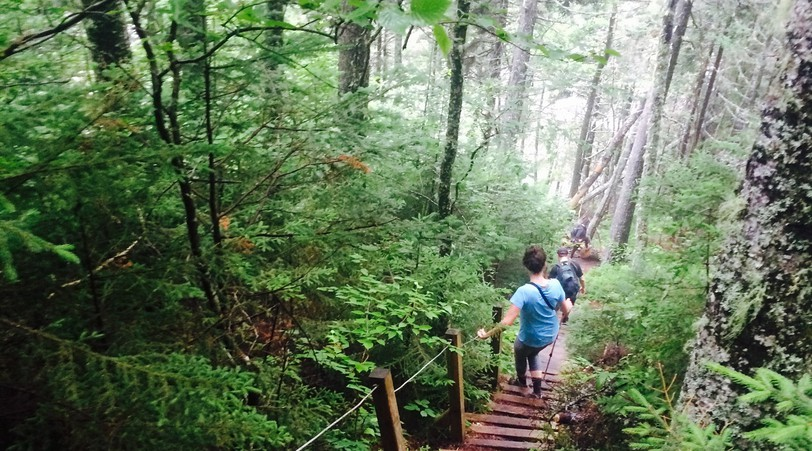Red Rock Adventure, a St-Martins-based company, offers fully supported backpacking hikes of the Fundy Footpath.