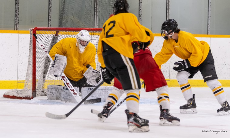 Players hoping to make this year's edition of the Campbellton Junior A Tigers were in town last week for training camp with the team expected to be finalized by this weekend.