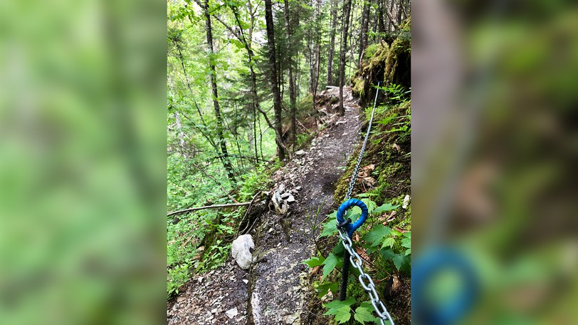 The Eye of the Needle hiking trail leading to Walton Glen Gorge was forced closed following damage caused bya helicopter rescue of an injured hiker on Sunday, which blew down trees and damaged the trail itself.