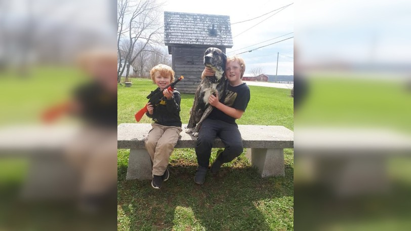 Melanie Vandewater's sons Ronan, left and Hunter hang out with their dog Steel. Vandewater has apologized to Dorchester residents after her dog got loose last week.
