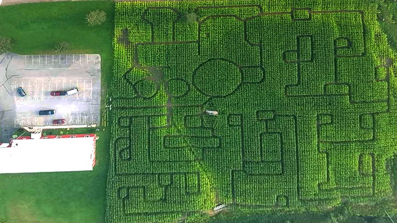 Freddy's New Frenchy's Owner John Maurer said this year's train-themed maze is one of the best he has ever made.