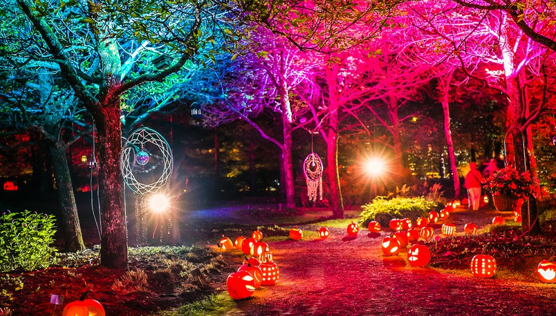 The 12th edition of La Grande Grouille, a unique colourful fall festival, will light up the New Brunswick Botanical Garden in Edmundstonagain this year.