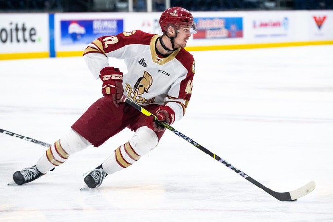 Cole Huckins, a third-round pick of the Calgary Flames, collected 14 goals and 32 points in 33 appearances with the QMJHL's Acadie-Bathurst Titan last season.