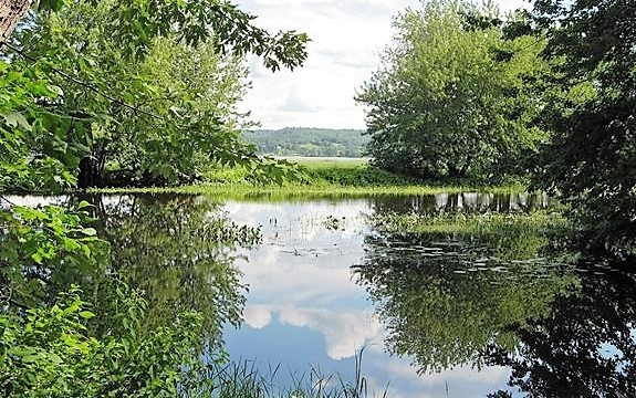 Ducks Unlimited Canada is investing $3 million over a 10-year periodin an effort to conserve more than 4,700 acres of critical wetland habitatalong the Wolastoq (St. John River).