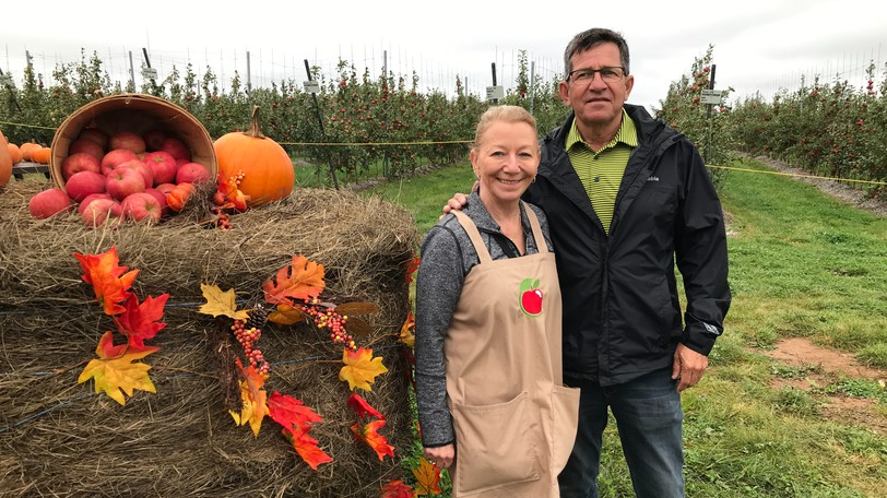 Louise and Reg Petitpas are the owners of Irishview Apple Management in Irishtown. The apple orchard opened for business last Wednesday.