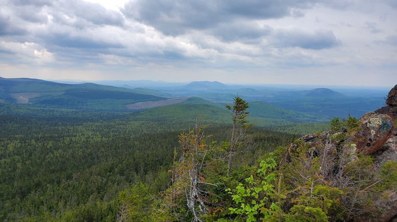 A view from the top of Mt. Carleton in northern New Brunswick. Canada's forests are one of our key assets in the fight against climate change, writes Margo Morrison.