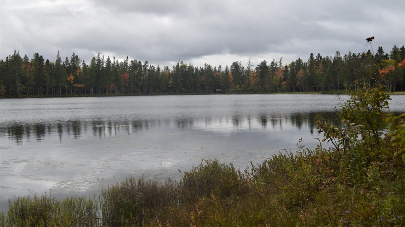 A community nature walk around Roulston Lake in Plaster Rock is one of the events planned for Western Valley Wellness Week Oct. 1-7 in the village. There will also be demonstrations of yoga, tai chi and an open house at the fitness centre.