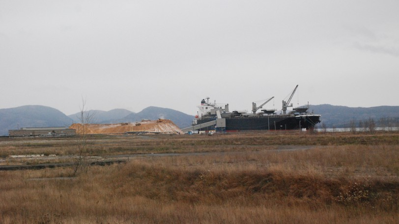 A ship is seen loading wood chips at the Port of Dalhousie in this file photo, past a large vacant lot where the paper mill once stood. Dalhousie Mayor Normand Pelletier says Dalhousie would be an ideal site for the manufacture of small modular nuclear reactors, as it has a port, which these days is mostly unused.