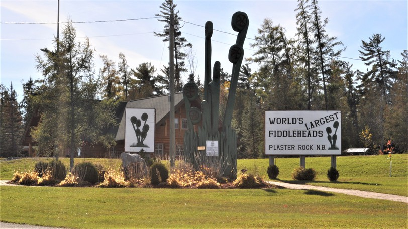 The Village of Plaster Rock awarded tenders for winter salt and sand at a special council meeting held on Sept. 27.
