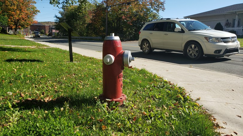 The Town of Woodstock will be flushing water lines and fire hydrants starting Oct. 12.