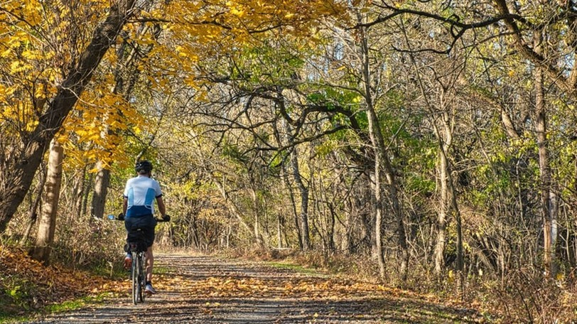 A trail advocacy group's proposed trail expansions could be a supplementary part of the Saint Andrews leg of New Brunswick's Coastal Link Trail. The town has received federal funding to the tune of $1.5 million for bike paths, and has three years to spend that money.