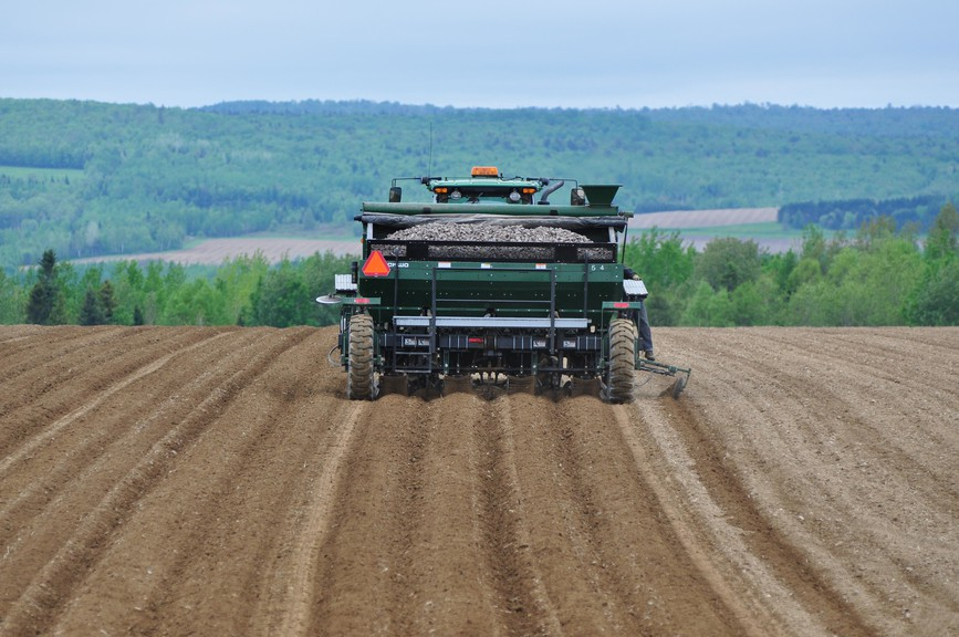 Agriculture and food production are an opportunity for New Brunswick to thrive in a post-COVID world, argues Donald Savoie.