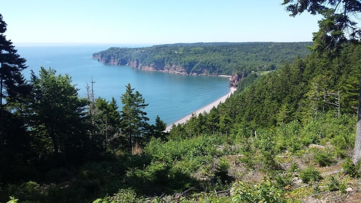 "The Fundy Trail was an excellent place to have the first ""staycation"" of the summer, and one which should attract numerous tourists from the other Atlantic provinces, writes Norbert Cunningham."
