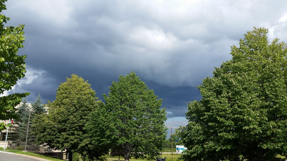 Parts of central and western New Brunswick are under a severe thunderstorm watch by Environment Canada Wednesday morning.