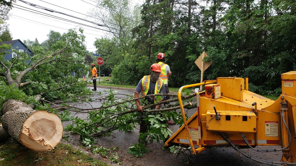 City crews have been busy chipping trees the last several weeks.