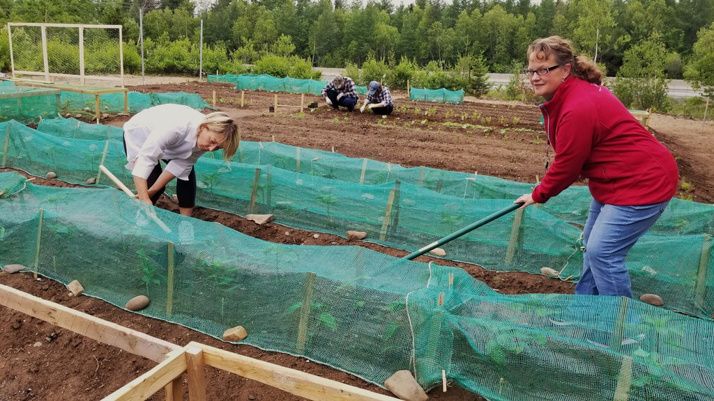 Corinne Hersey, left, owner of Natural Capital garden design company, and Susan Strickland, community ministries co-ordinator for the Salvation Army in Fredericton, work on the church's new community garden.