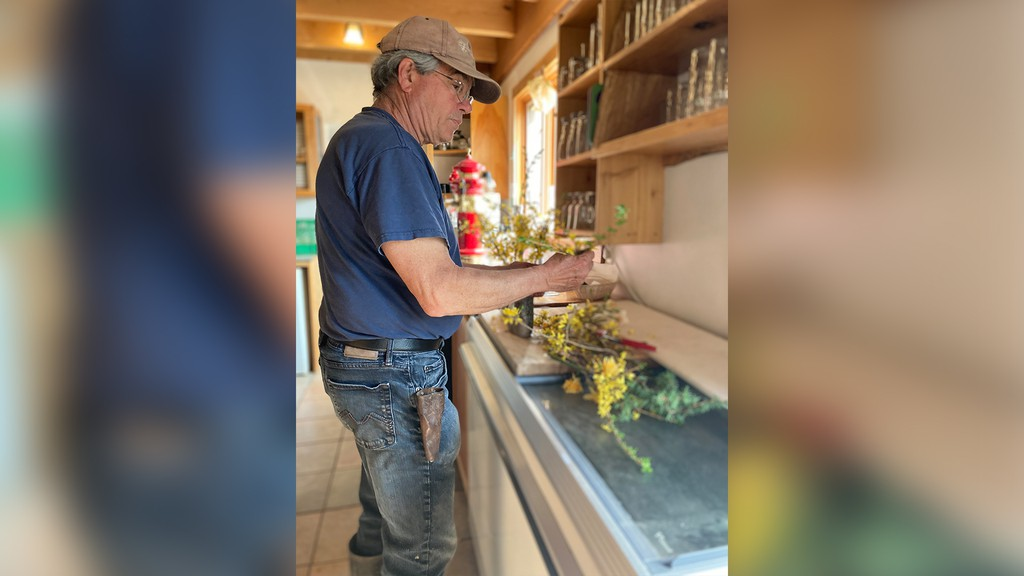 Bob Osborne, owner of Corn Hill Nursery, works on some flowers in this photograph. Nurseries across the province have been extremely busy this year due to the COVID-19 pandemic, despite initial fears the pandemic would seriously hurt business.