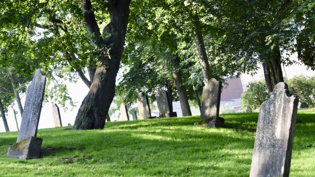 The old loyalist burial ground, Saint John. Police responded to reports of a shot fired near the area on Sunday night.
