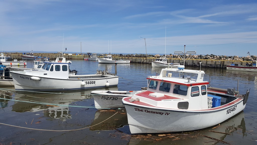 Lobster season ended on July 4 with prices dropping 30 per cent in comparison to the three previous years according to Martin Mallet, the executive director of Maritime Fishermen's Union.